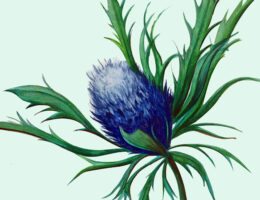 Blue Thistle Flower painted on green background.