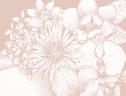 White on pink Artwork, featuring beautiful hand drawn flowers upon a women's hair.