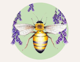 A Wall Art print representing a Spring Garden, the print is a Painting of a Honey Bee atop Purple Foxglove flowers, under the bee and flowers is a retro style circle in soft green.